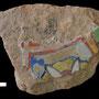Echantillon num illisible. Fouilles de l'Ak Saray de 1996.  Conservé au Musée Amir Temur de Shahrisabz (photo : C.Ollagnier, 2008)