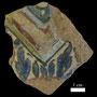 Echantillon BDX 11852. Fouilles de l'Ak Saray de 1996.  Conservé au Musée Amir Temur de Shahrisabz (photo : C.Ollagnier, 2008)
