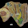 Echantillon BDX 11846. Fouilles de l'Ak Saray de 1996.  Conservé au Musée Amir Temur de Shahrisabz (photo : C.Ollagnier, 2008)