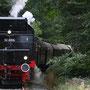 Nahe der Burgruine Hardenstein ist die 52 auf dem Weg in Richtung Hagen - Foto: Dirk Wassiloff