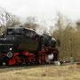 Ohne Zug legt die Lok den letzten Kilometer bis Gerolstein zurück