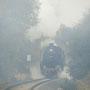 Dichter Nebel am Scheitelpunkt der Strecke in Schmidtheim I