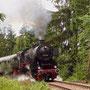 Rückfahrt nach Ulmen im Wald zwischen Daun und Darscheid