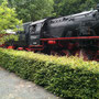 Unterwegshalt auf der Teutoburger Waldeisenbahn - Foto: Stefan Sinne