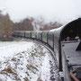 Blick zurück auf den 8 Wagenzug