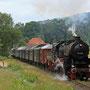 Bei Brochterbeck ist der stattliche Zug auf dem Weg in Richtung Lengerich - Foto: Jürgen Brockamp