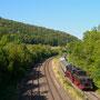 Unterhalb der Kasselburg rollt der Zug an Pelm vorbei - Foto: Ulrich Berensmeier