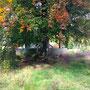 Herbststimmung am Forsthaus