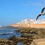Marocco - Essaouria
