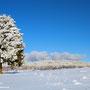 Blick zum Hoherodskopf - bei klirrender Kälte und herrlichem Sonnenschein