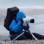 Die Hobbyfotografin auf Helgolands Düne 2016