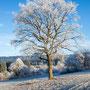 Winterzeit - schöne Zeit
