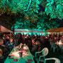 Hoffest im Weingut Guntersblum