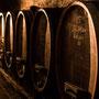 Holzfässer im Weinkeller in Guntersblum