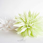 dalia-crepé-blanca-verde-papel
