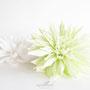 dalia-crepé-verde-papel-blanca