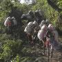 Mules approvisionnant les villages