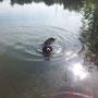 Gyöngyi beim Schwimmen