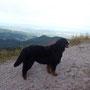 kraxelt auf die Berge um die Aussicht zu genießen