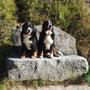 Ariba und Lady auf unserer ''berühmten'' Steinbank