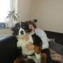 und Carlos beim Schmusen ;) - ein kleiner Schoßhund ;)