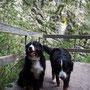 wow - waren das viele Stufen an den Wasserfällen lang - erst einmal kurze Pause