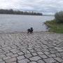 Konrad meint - das Quellwasser ist besser ;)