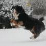Jump - da kommt der Schneeball....