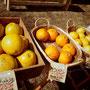 森の扉厳選の柑橘類