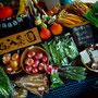 台風でも彩豊かな野菜をもって、台風でもやっぱり元気な池の入農園さんでした