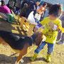犬とたわむれる子供