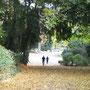 Parci e zone verdi