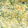Rotgrüner Granit