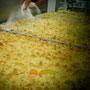 Bäckerei Weißbach › Aprikosenkuchen