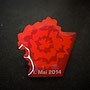 Mainelke 1. Mai 2014 DGB Pin