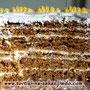 Трухлявый пень Бисквитные коржи с добавлением варенья, сметанный крем