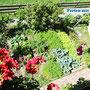 Blick vom Balkon auf den Gemüsegarten. Bevorzugt wird mit Gemüse aus dem eigenen Garten gekocht!