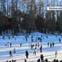 Tolle Eisbahn mitten im Wald bei Sfruz - unsere Gruppen erhalten Ermäßigung! - Dez-März