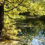 Herbst wie im Bilderbuch