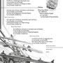 Liederbuchillustration, Grafikcollage 2014 / Layout NH