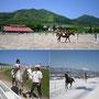蒜山ホースパーク☆車で5分☆乗馬体験へGO!