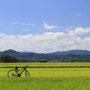 サイクリング☆蒜山高原のいろんな場所でレンタルできますよ♪