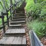 サルボ展望台への道