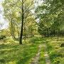 im Naturpark, Foto:skb