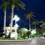 Zócalo de noche - Alvarado
