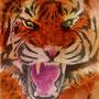.. Doodle 210/365 - Stichwort: Tiger