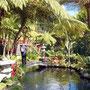 """Im herrlichen """"Jardim Tropical"""""""