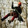 Baumpflege mittels Seilklettertechnik