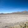 Altiplano - Pérou
