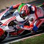 Nicky Hayden - Championnat du Monde Superbike 2016 - Magny-Cours